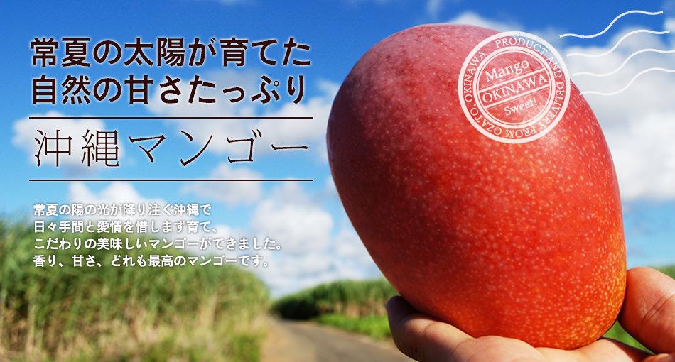 自然の甘さたっぷりの完熟沖縄マンゴー