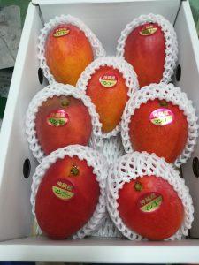 アップルマンゴー!綺麗なのあるよ!!