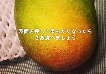 オレンジに変わったら追熟完了!